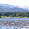 Get Connected charity places at Great North Swim 2014