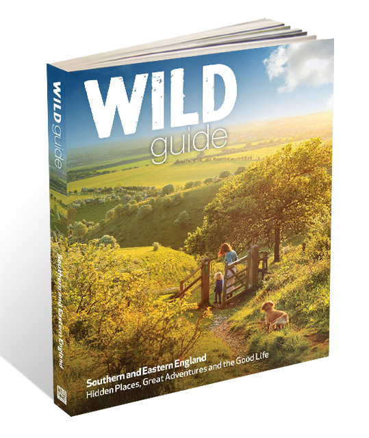 Wild Guide South East 3D low res