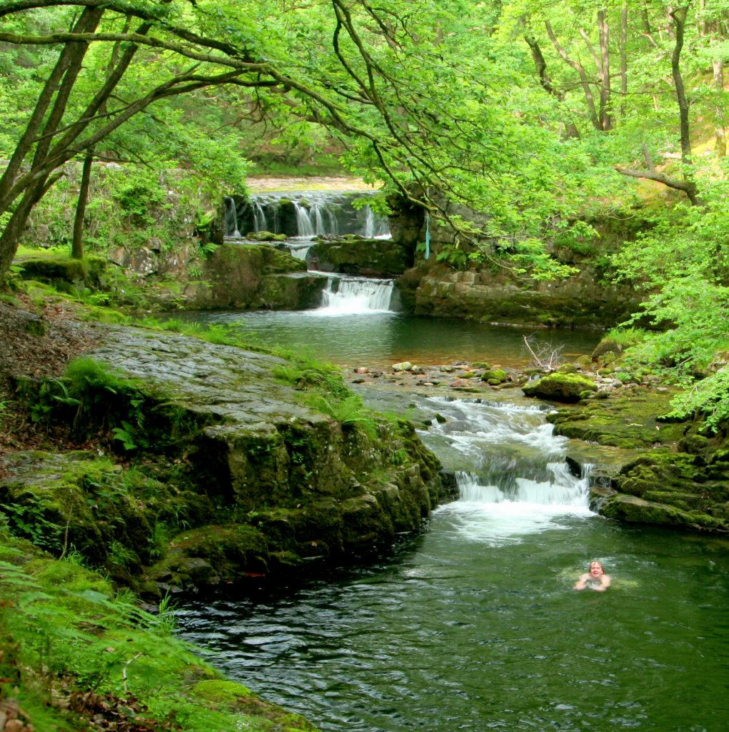 Wild Swimming in the Waterfall Woods
