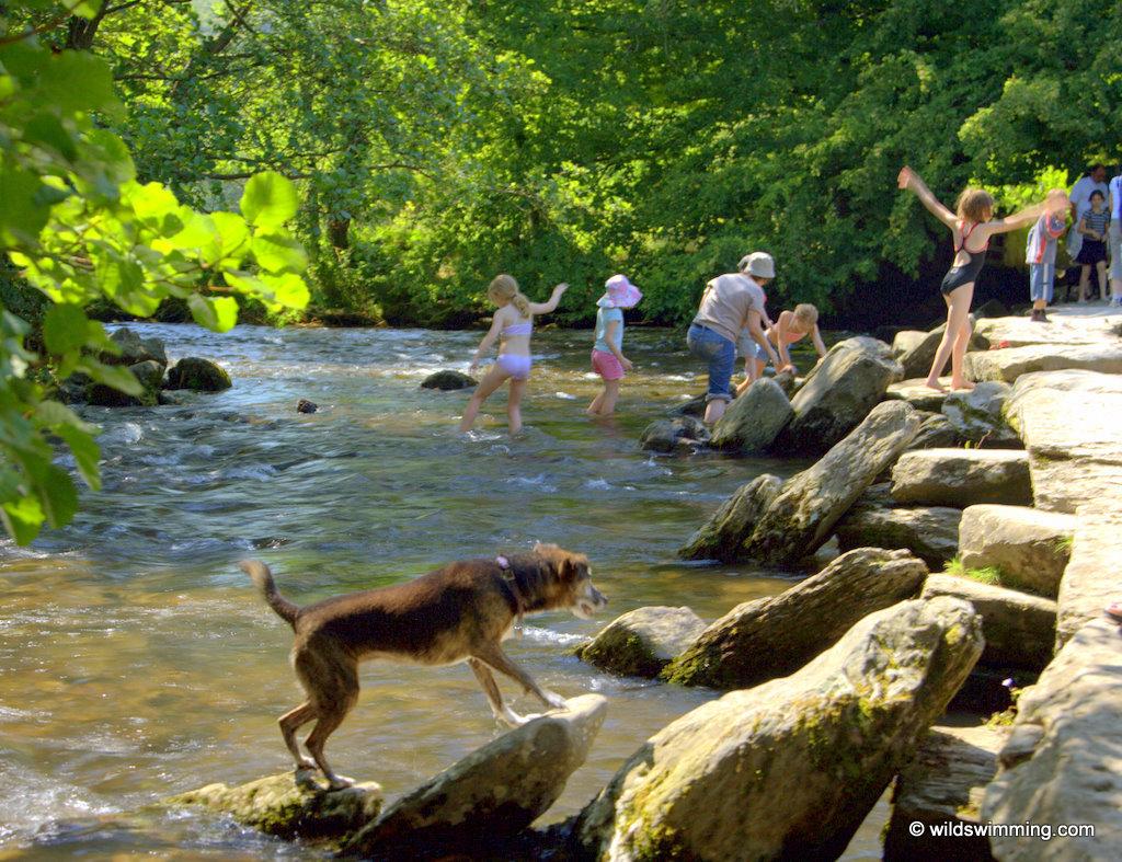 wild swim map uk wild swimming outdoors in rivers lakes holi