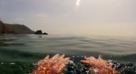 Wild Swimming Micro Adventures – the best wild swims in Britain