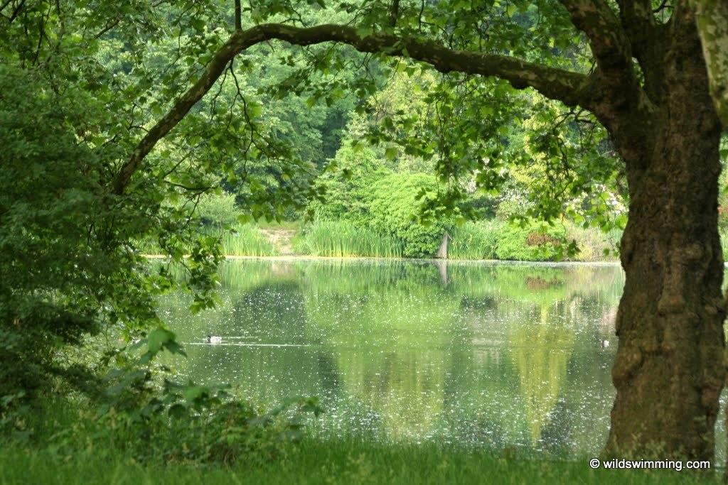 Hampstead Ponds Wild Swimming Outdoors In Rivers Lakes And The Sea